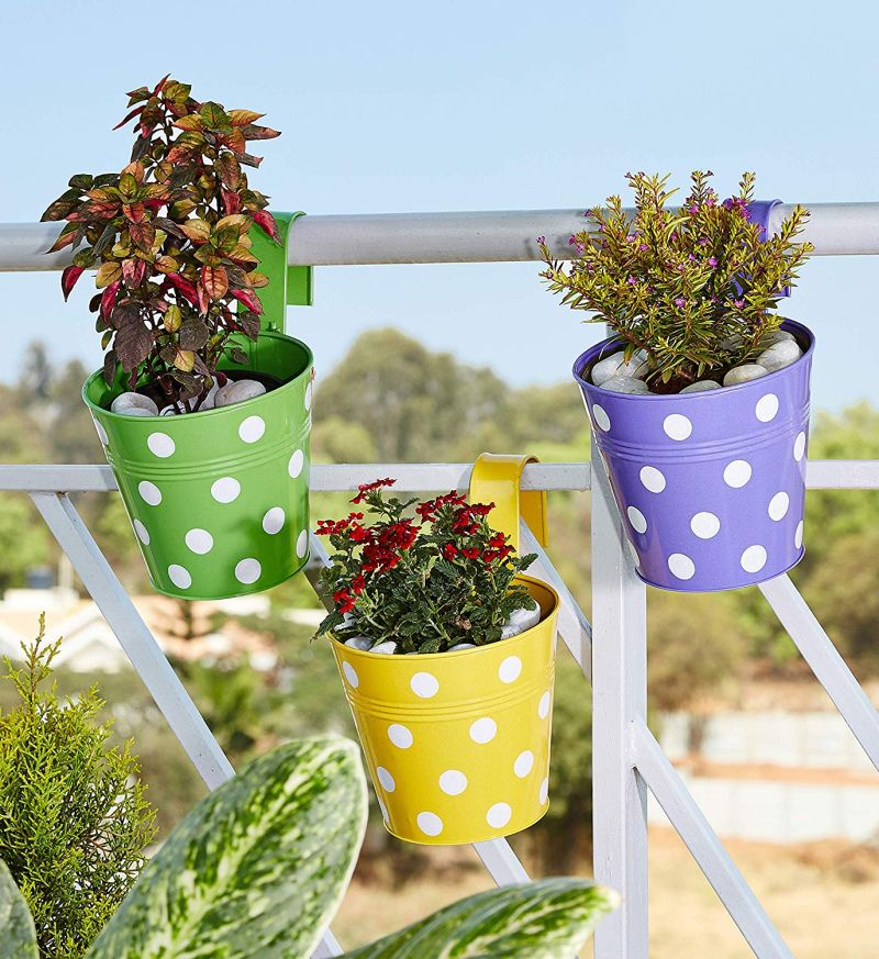 Amazon Brand - Solimo Polka Dotted Railing Planter